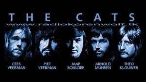 the cats.jpg