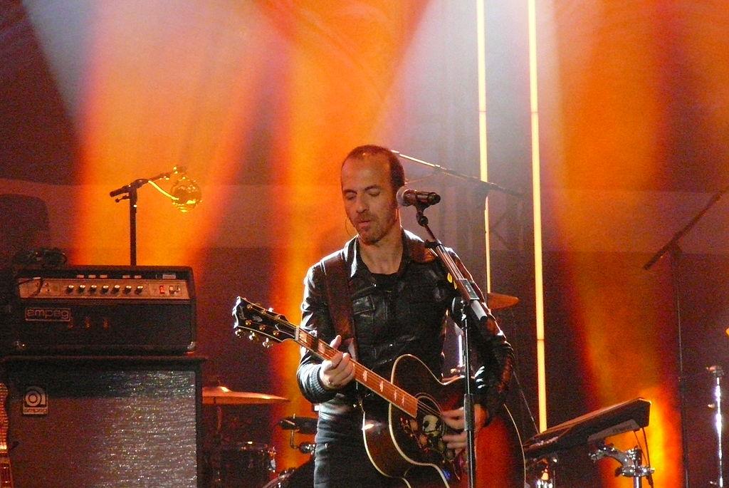 Calogero_en_concert_à_Bruxelles_en_2014.JPG